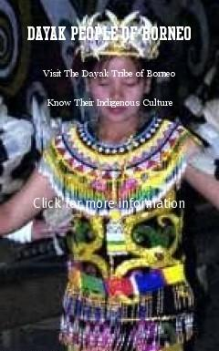 The Dayaks tribes came to Kalimantan as a migration from other parts in Asia about 3000 years ago. Dayak are defined in more then 200 different tribes, the main tribes are the Bakumpai and Dayak Bukit of South Kalimantan; the Ngajus and Baritos of Central Kalimantan; the Benuaqs, Kayan, Kenyah, and the nomadic Punan