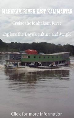 kalimantan Mahakam River Safari tour trip