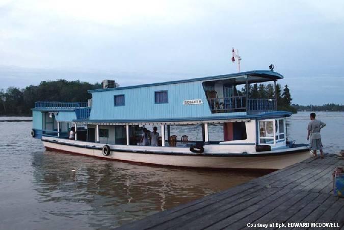 Mahakam River Cruise Safari Tour Trips