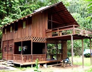 Wehea Jungle, Wehea Forest, Wehea Trekking, Wehea Reserve, Wehea Dayak Tribe, Wehea Park, Wehea Tropical Forest, Wehea Forest Conservation, Wehea hike, Wehea adventure, Wehea Camp, Wehea Trip, Wehea Tour, Wehea Safari