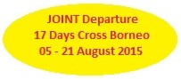 cross borneo expedition, joint, group, jungle trek, rain forest, wildlife, adventure, borneo, kalimantan