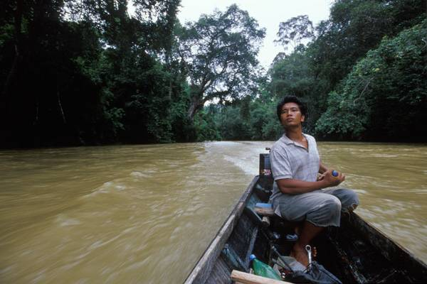 borneo,kalimantan,indonesia,trek,jungle,mahakam,river,tour,cruise,houseboat,dayak,tribe,forest,orang utan,flight,reservation,book,safari,room,hotel,ticket,online,airline,guide,flora,fauna,orchid,longhouse